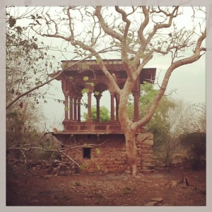 A ruin right in the middle of the Madhav National Park.